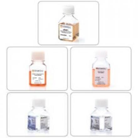 biobanci-medii-de-crioconservare.jpg